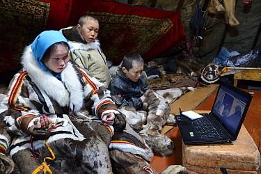 Nenet children, two boys and a teenage girl, watching laptop inside tent. The girl is sewing reindeer skin. Yar-Sale district. Yamal, Northwest Siberia, Russia. April  2016.