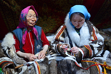 Two generations of Nenet women, an older woman and teeage girl, sewing and wearing traditional coat made with reindeer skin. Yar-Sale district, Yamal, Northwest Siberia, Russia. April 2016.