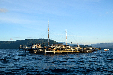 Bagan (floating fishing platform) Cenderawasih Bay, West Papua, Indonesia.