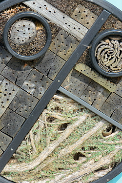 Insect hotel with drilled logs, bundles of bamboo stems and lichen-covered bracnhes, Gloucestershire garden, UK, April.