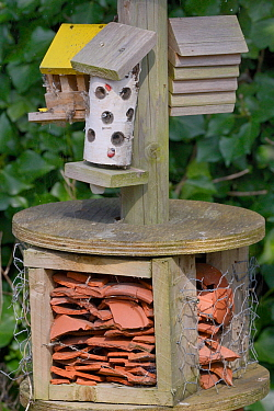 Insect hotel with a variety of crevices among broken pottery, drilled logs and wooden blocks, Gloucestershire, UK, April.