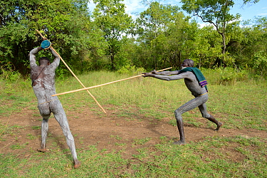 'Donga' stick fighters, Suri / Surma tribe. The Donga fights are an outlet to resolve conflicts between tribes. Omo river Valley, Ethiopia, September 2014.