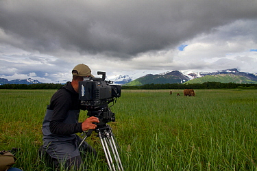Cameraman filming Grizzly bear (Ursus arctos horribilis) with cubs on production for 'Bears'. Katmai National Park, Alaska, July 2013.