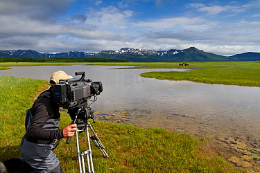 Cameraman filming Grizzly bears (Ursus arctos horribilis) on production for 'Bears'. Katmai National Park, Alaska, July 2013.