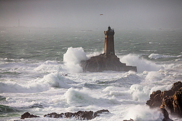Waves lashing La Vieille ('The Old Lady') Lighthouse during winter storm, Plogoff, Finistere, Brittany, France.