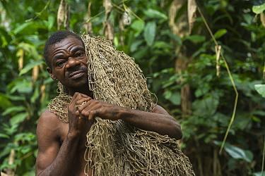 Ba'Kola Pygmy man with traditional duiker hunting net. Mbomo, Odzala-Kokoua National Park, Republic of Congo (Congo-Brazzaville), Africa, June 2013.