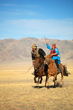Eagle hunter woman whipping man on slow Mongolian horse to try to slow him down during game at the Eagle hunter's festival. She is on a faster horse but if he wins the game he is entitled to a kiss. E...
