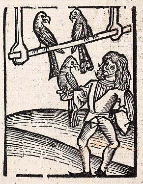 Woodblock illustration, the first printed image of a falconer with hawks, from Ortus (Hortus) Sanitatis 1491 - translated from the Latin as 'Garden of Helath'. The Hortus was the first printed natural...
