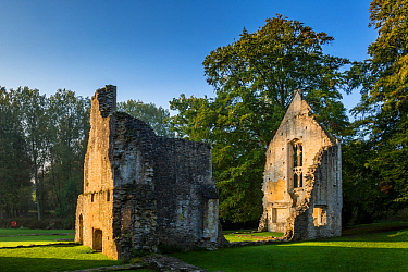 Ruin of Minster Lovell Hall, Witney, Oxfordshire, UK. October 2015.