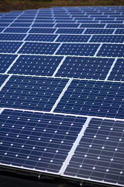 Photovoltaic panel array on a solar farm, UK. 2012