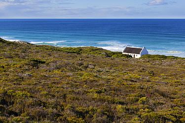 House above sea, fynbos habitat,   De Hoop Nature Reserve, Western Cape, Overberg, South Africa. June 2013.