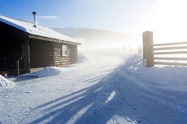 Cabin and fence line in winter fog at Lamar Buffalo Ranch, Yellowstone National Park, Wyoming, USA. February 2016.