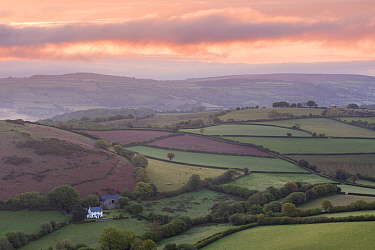 Sunrise over Quintatown farm in fields of Dartmoor National Park, near Chagford, Devon, England, UK. May 2015.