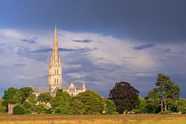 Salisbury Cathedral on a summer evening, Salisbury, Wiltshire, England, UK. July 2014.