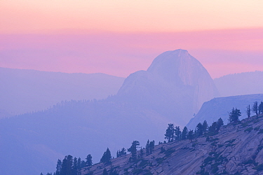 Half Dome at sunset with mountain partially obscured by smoke from Dog Rock wildfire, Yosemite, California, USA. October 2014.