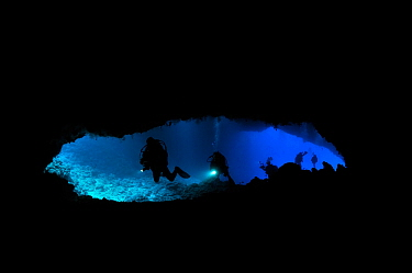 Diver in a cave called 'Turtle Cove' - a narrow entry of the cave where sometimes turtle enter and get lost inside - Koror, Palau, Philippine Sea
