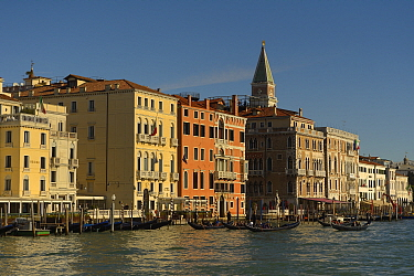View along the Grand Canal with gondolas and St Marks Basilica in the background, Venice, Italy