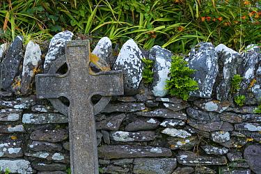 Ballinskelligs Priory, Iveragh Peninsula, County Kerry, Ireland, Europe. September 2015.