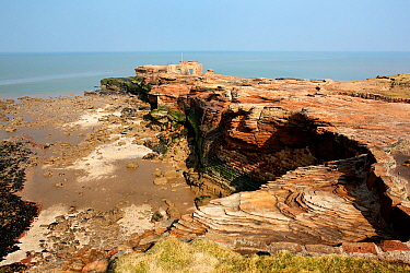 Hilbre Island - view of north end with sandstone cliffs and shore at low tide with  the old lifeboat station and bird watching hide above. Brick reinforcement of base of cliffs also visible, River Dee...