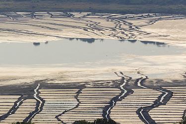 Salt harvesting system inside the crater, Bunyampaka salt lake, Queen Elizabeth National Park. Uganda
