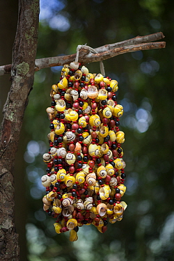 Necklaces made from endemic Polymita land snails for sale to tourists, Cuba
