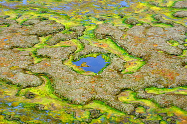 Yukon Delta tundra wetland aerial in fall. Alaska. September.