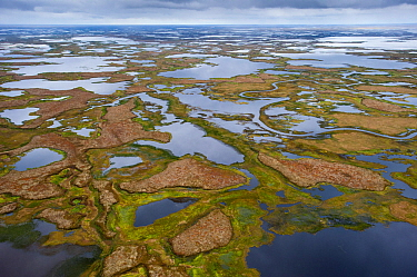 Aerial view of Yukon Delta National Wildlfie Refuge, Alaska. September.