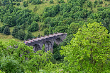 Walkers and cyclists on the Headstone Viaduct, which crosses Monsal Dale and the River Wye, and is part of the Monsal Trail cycle route.  Peak District National Park, Derbyshire, UK July