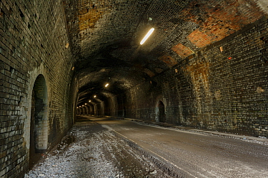 The Headstone Tunnel, 490m long, formerly part of the Buxton - Matlock railway line, now part of the Monsal Trail cycle route. Opened 2011. Peak District National Park, Derbyshire, UK