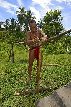 Mentawai  man making a banister for steps to the uma (communal long house)  Siberut Island, Sumatra. July 2016.
