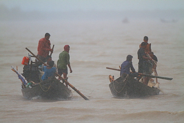 Fishermen in boats on river during monsoon rain, Sundarbans, Bangladesh, September 2011. No release available.