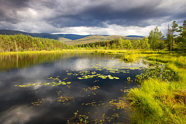 Uath Lochan with stormy skies reflected in water, Cairngorms National Park, Scotland, UK, July 2014.