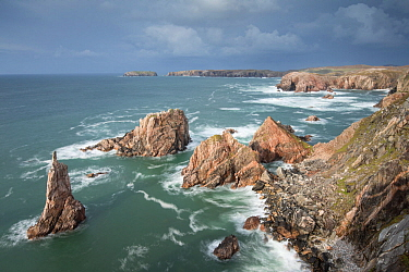 Sea stacks off west coast of Lewis at Mangurstadh / Mangersta, Isle of Lewis, Outer Hebrides, Scotland, UK, October 2014.