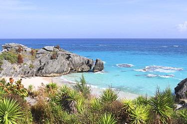 Warwick Long Bay beach, Bermuda. October 2015