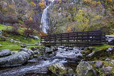 Aber Falls (Rhaeadr-fawr) showing the footbridge for the North Wales Path over the stream below the falls near Abergwyngregyn, Gwynedd, North Wales, UK, November 2016.