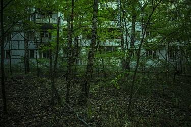 Abandoned tower block in Pripyat, Chernobyl Exlusion Zone, Ukraine September