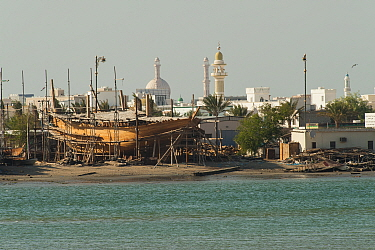 Sur, a city at the coast of Oman, with mosques and a traditional dock for the construction of wooden boats, Sultanate of Oman, February.