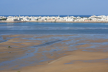 Sur, a city at the coast of Oman, with tidal mudflats and sand banks, Sultanate of Oman, February.