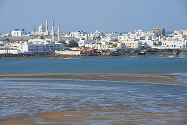 Sur, a city at the coast of Oman, with tidal mudflats, sand banks and traditional boats, Sultanate of Oman, February.
