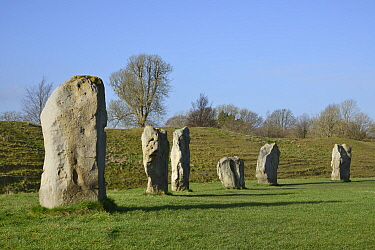 Neolithic megaliths, Avebury Stone Circle, Wiltshire, UK, February 2014.