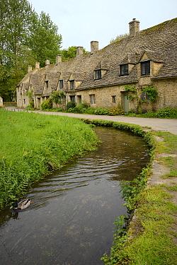 Arlington Row weaver's cottages, Bibury, Gloucestershire, UK, May 2014.
