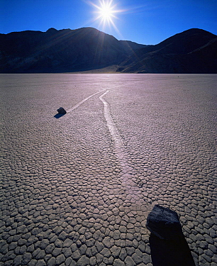 Boulders with trails across a dry lake bed, sunrise, The Racetrack Playa, Death Valley National Park, California