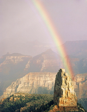 Rainbow after a storm over Mount Hayden, Point Imperial, North Rim, Grand Canyon National Park, Arizona, USA.
