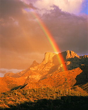 Rainbow over Table Mountain and the Pusch Ridge Wilderness in the Santa Catalina Mountains, Arizona