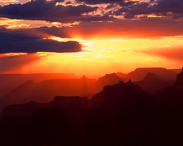 View from Navajo Point to the west with the sun's rays silhouetting Angels Gate, Isis, Shiva and Zoroaster Temples next to Wotons Throne at sunset, Grand Canyon National Park, Arizona, USA