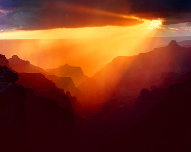North Rim at Cape Royal with sunset storm light streaming in rays, backlighting the canyon ridges, Grand Canyon National Park, Arizona, USA