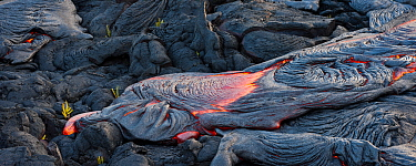 Molten lava streaming across solidified lava from Kilauea in Hawaii's Volcanoes National Park, on Hawaii's Big Island of Hawaii, USA