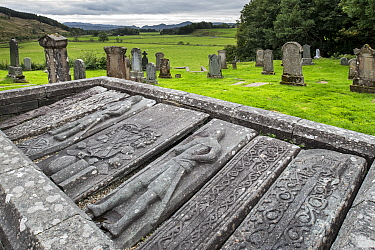 Carved Kilmartin Stones, collection of 79 ancient graveslabs at Kilmartin Parish Church, Argyll, Scotland, UK, September 2016