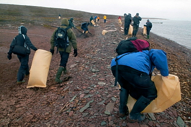 People collecting litter along shoreline, Svalbard, July 2002.