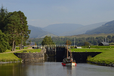 Classic wooden yacht approaching a lock  on the Caledonian canal at Gairlochy, Lachaber, Scotland, UK, September 2016.